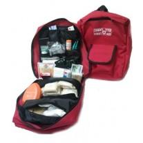 תיק מגיש עזרה ראשונה לגן ילדים או בית ספר תקן משרד החינוך